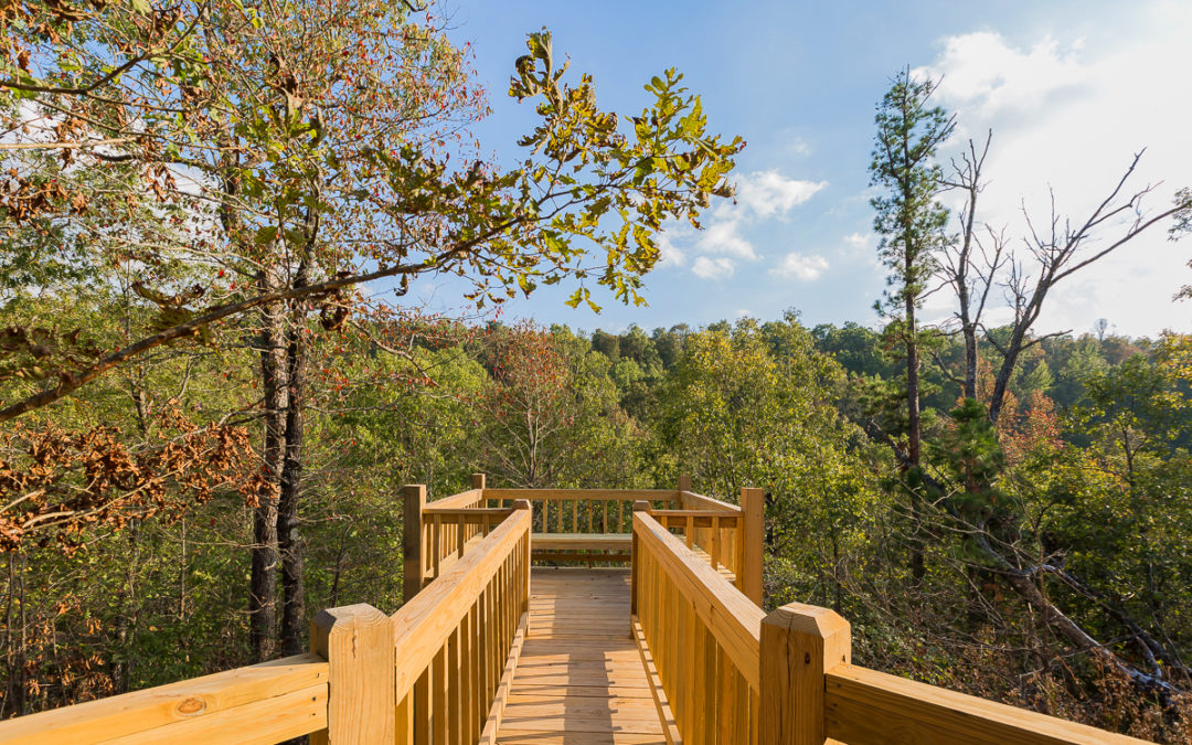 Find Arkansas Cabins For Rent